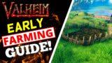 Valheim – How To Farm