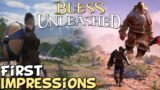 Bless Unleashed PC MMO First Impressions