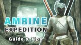 How to do the AMRINE Expedition | First Dungeon ► New World