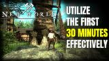 Utilize Your First 30 Minutes on Release Effectively | New World MMORPG