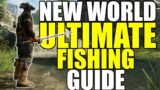 NEW WORLD MMO – ULTIMATE Fishing Guide – Everything You Need To Know!