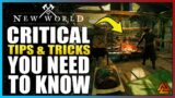 New World: 12 CRITICAL Tips and Tricks That You NEED To Know!